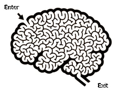 labyrinth-brain