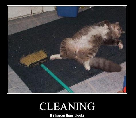 cleaning-fail-e1349708511494