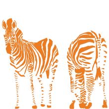 wall-decal-zebra-orange