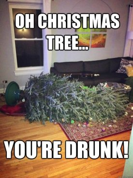 funny-tree-meme-oh-christmas-tree-you-are-drunk-photo